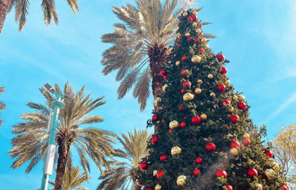 Free Events for Christmas in Miami